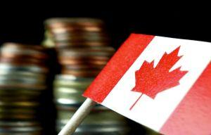 Canadian Bitcoin Miner Goes Bankrupt Indebted To Taxpayers 101