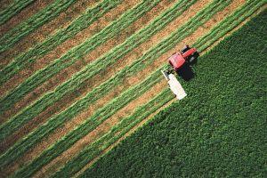 Verim Çiftliği Alanı Nasıl Değişiyor 101