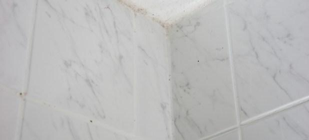 Mildew On Ceiling In Bathroom Boatyliciousorg - Mildew on bathroom ceiling