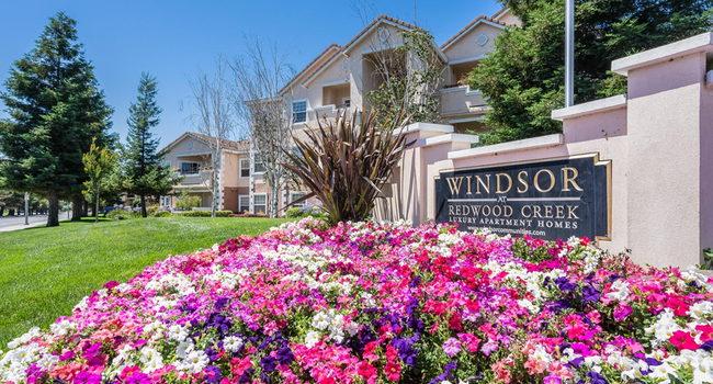 Windsor At Redwood Creek 88 Reviews Rohnert Park Ca
