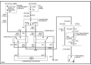 97 Convertible Power Top Wiring Diagram  MustangForums