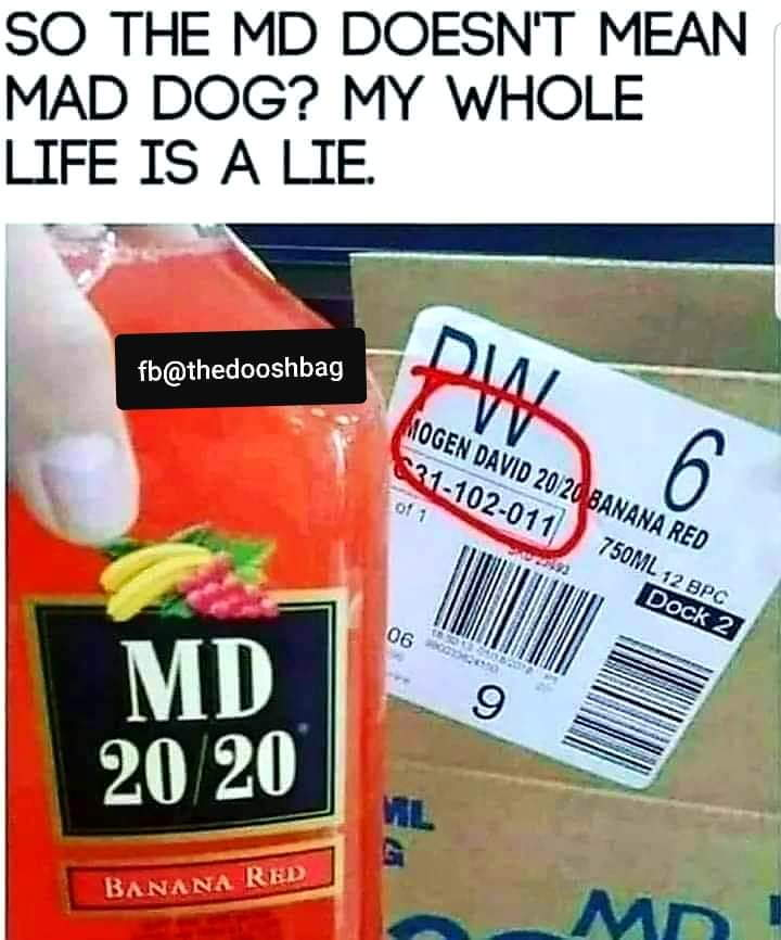 Top 27 Angry Dogs Memes Quotes And Humor