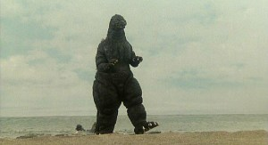 Hey! We TOLD you not to leave behind any lizards!