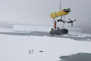 Penguins: They Love UUVs. NSF-funded SeaBED shown.