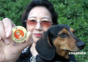 Targhette di riconoscimento per cani
