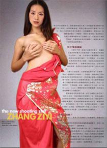 2004-zhang-ziyi_fake