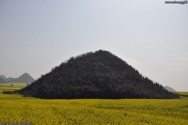 luoping_flowers_yunnan_010