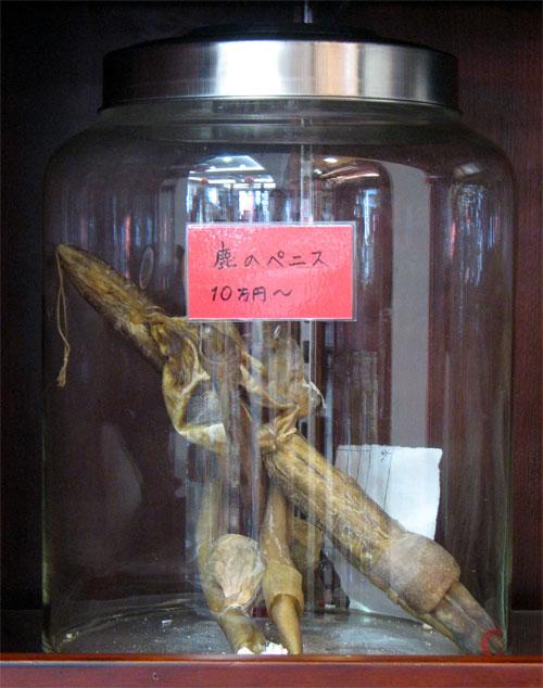abusi animali medicina tradizionale cinese-cervi