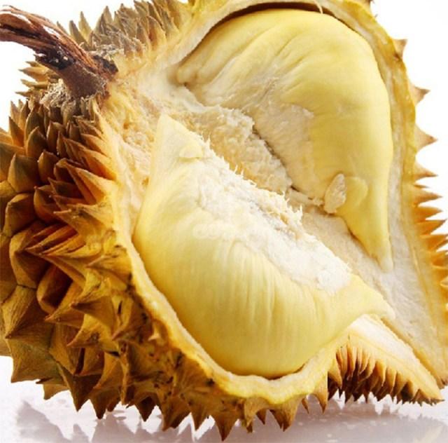 007durian-durian