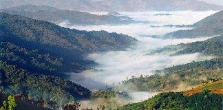 Viaggio a Lincang - La foresta di Nangun