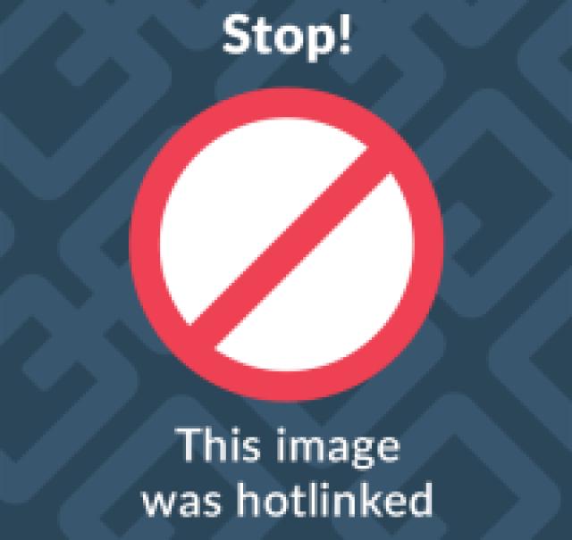 tigri obese