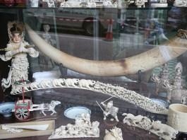 contrabbando di avorio in Cina