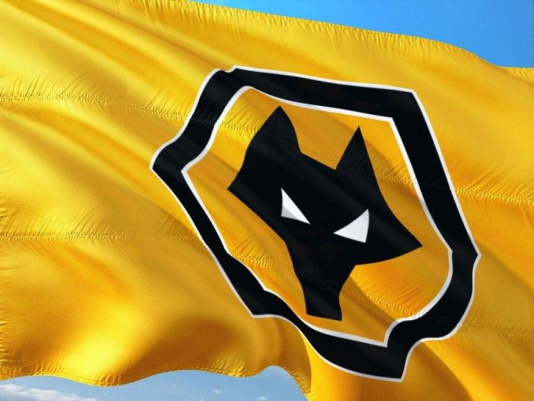 Wolverhampton e Southampton: cina premier league