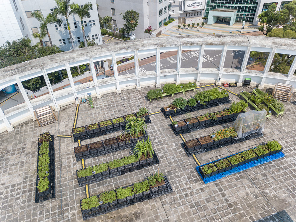 Rooftop Republic Academy at the JCEB Building Photo Credit Rooftop Republic Mark Teo