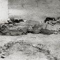 massacro dei cinesi del 1871