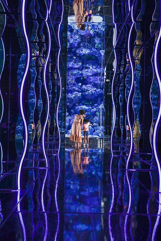 Kaleidoscope for Branson Aquarium USA
