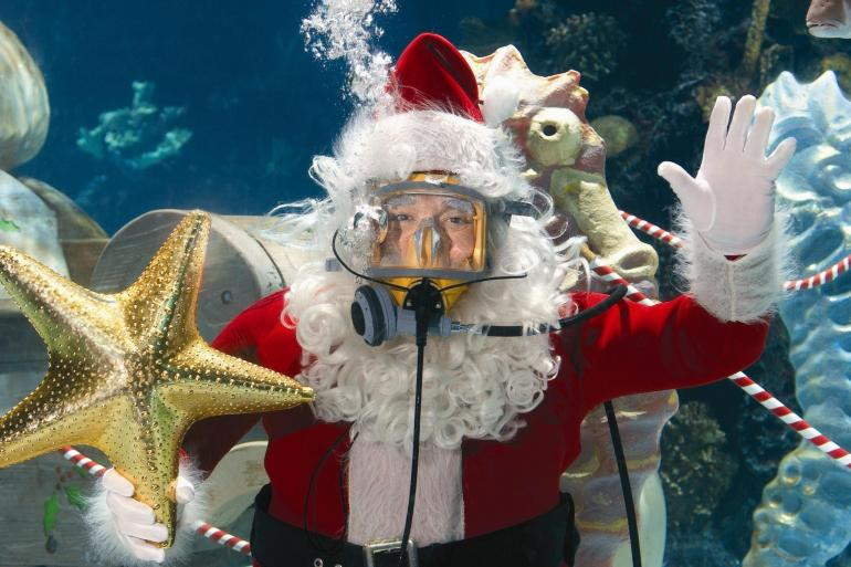 Image result for scuba santa
