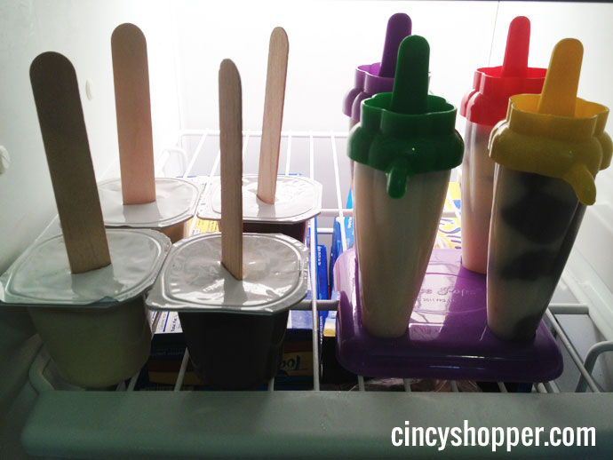 Pudding Pops - DIY the easy way with pudding cups.
