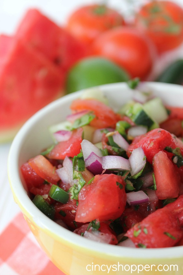 Fresh Watermelon Salsa Recipe 2