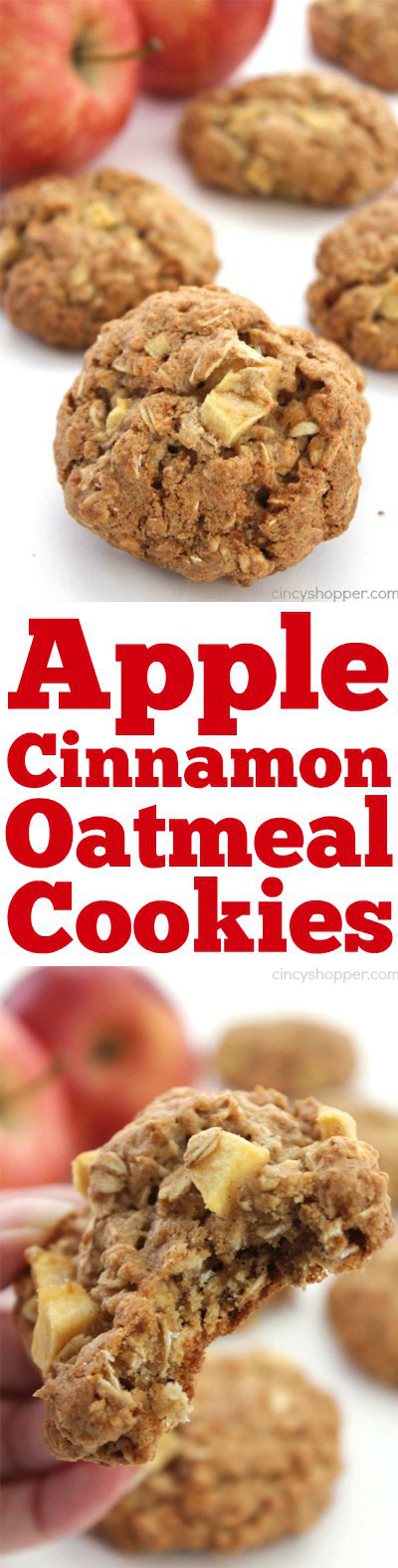Apple Cinnamon Oatmeal Cookies- make for the perfect fall dessert or even an on the go breakfast.