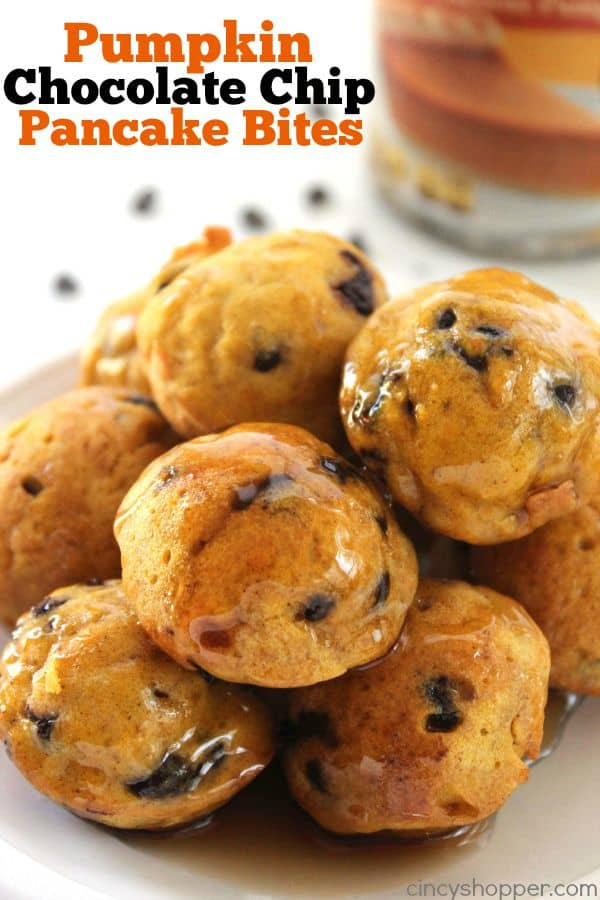 Pumpkin Chocolate Chip Pancake Bites - loaded with great pumpkin flavor along with chocolate chips to make for a great bite sized or on the go fall breakfast idea.
