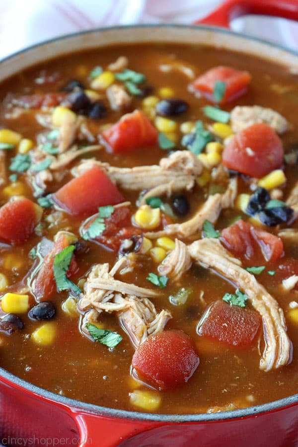 Closeup of Chicken Tortilla Soup in a pot.