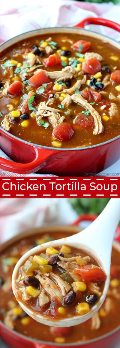 Long Chicken Tortilla Soup inage.