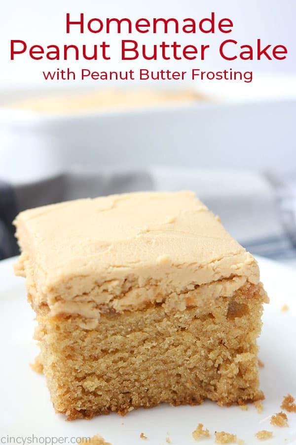 Piece of peanut butter cake