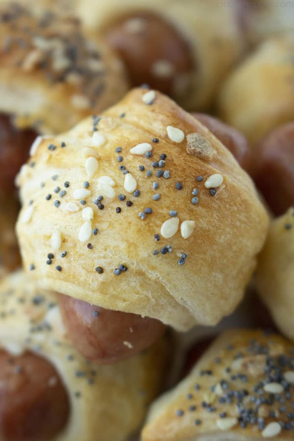 """""""Everything Bagel"""" Pigs in a Blanket"""