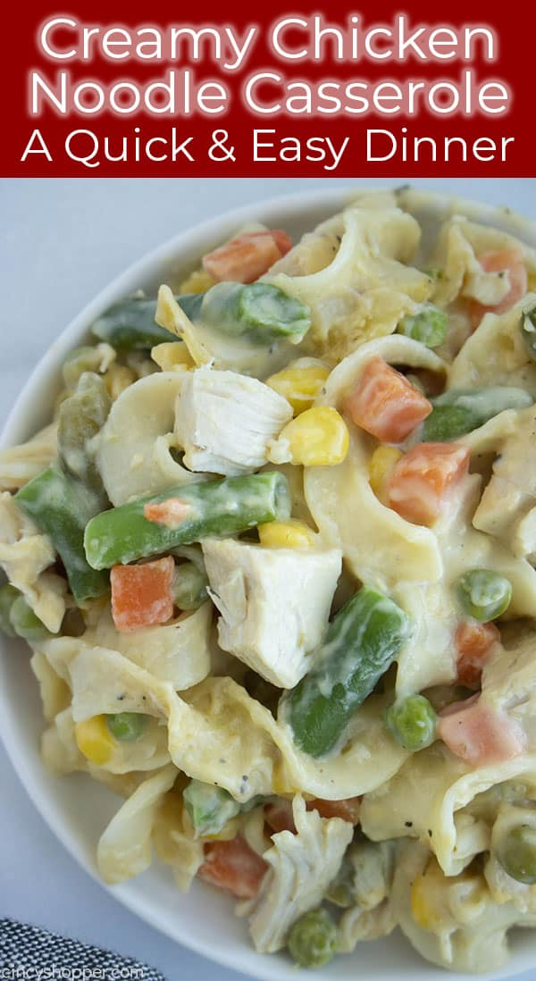 chicken noodle casserole with vegetables on a plate