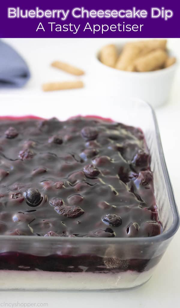 Long pin with cheesecake dip topped with blueberries text on image title and A Tasty Appetizer