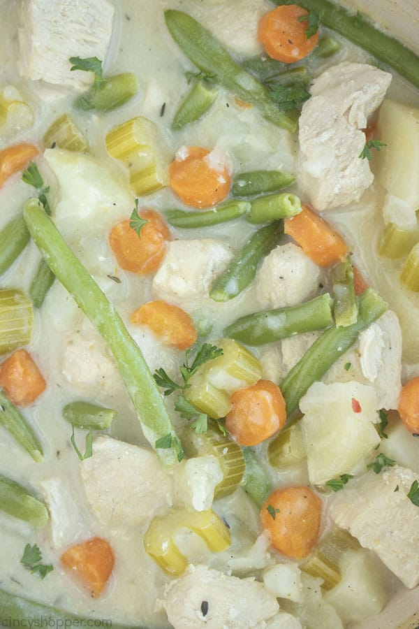 Closeup of Chicken Stew