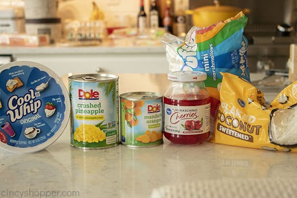 Ingredients to make fruit ambrosia salad