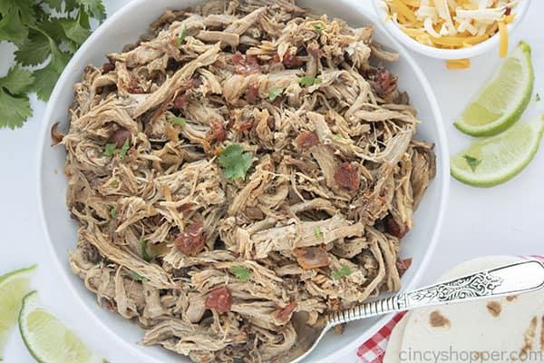 Bowl of shredded pork carnita