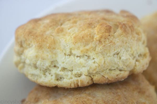 Closeup of Flakey Biscuit
