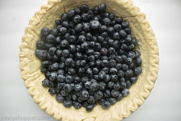 Blueberries added to prebaked pie crust