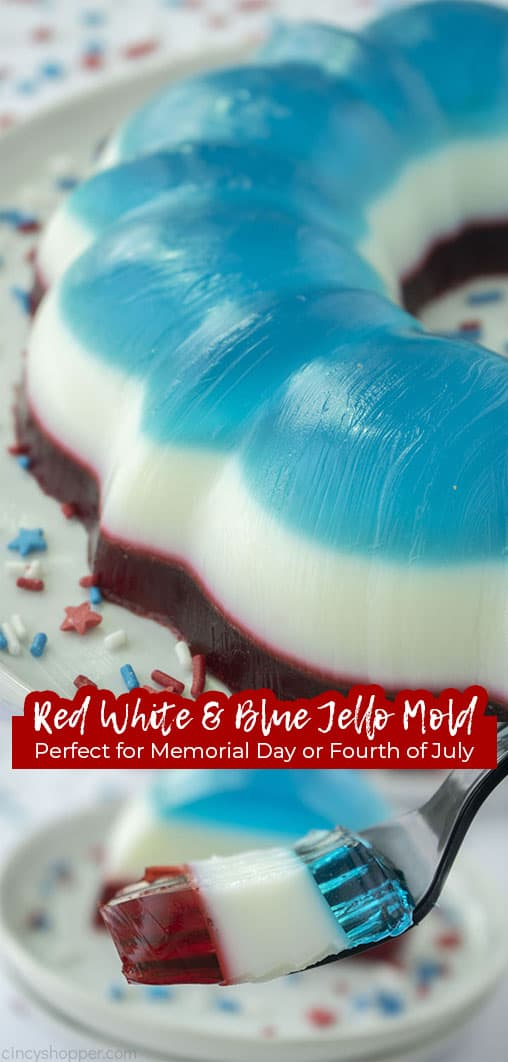 Long pin Red White & Blue Jello Mold Perfect for Memorial Day and Fourth of July