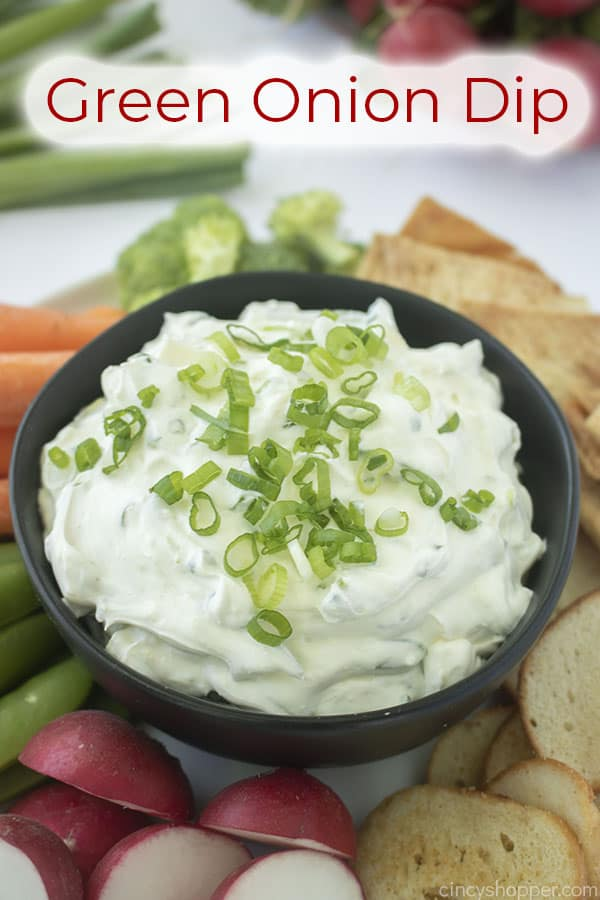 Text on image Green Onion Dip