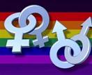 gay m