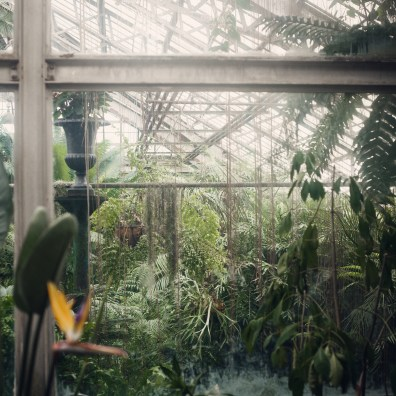 inside lincoln park conservatory