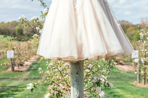 handing bridal gown in midwest apple orchard