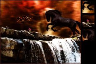 sytor