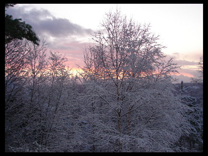 December 28, 2009 - Norwegian winter sunrise