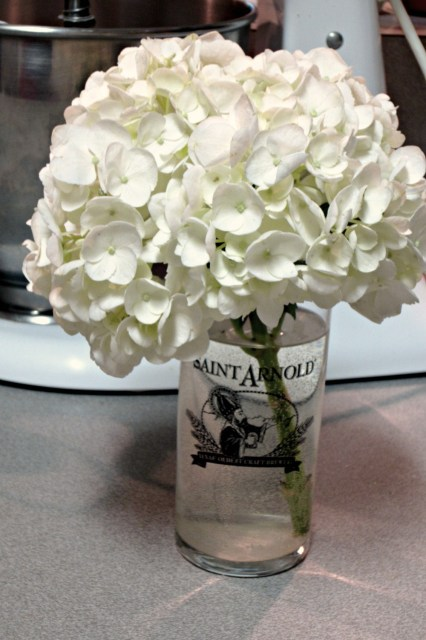 hydrangea in a beer glass
