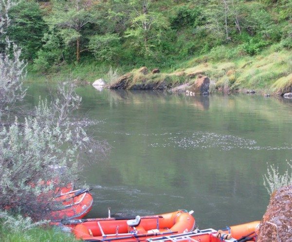 cindy barganier on the Rogue River
