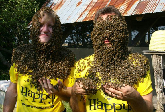Bee-lieve it!