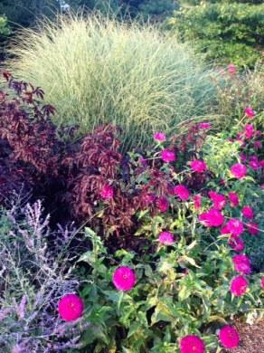 botanical english garden 3