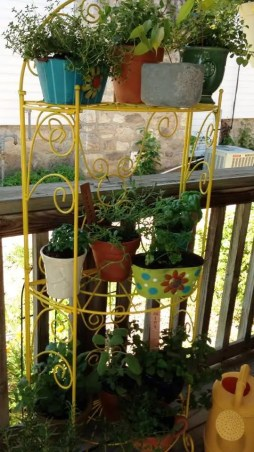 Fall garden herb rack