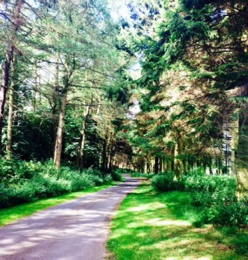 Path to Thirlestane e