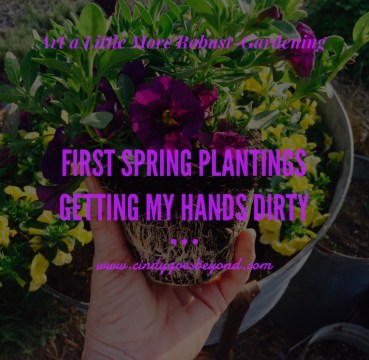 First Spring Plantings